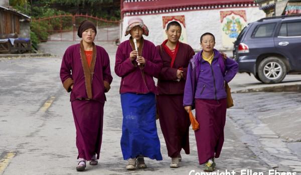 Nuns at the Lamaling Temple