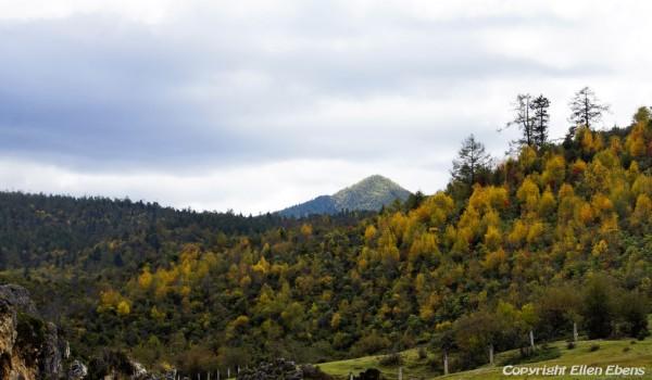 Landscape near Shangri-La (Zhongdian), Yunnan