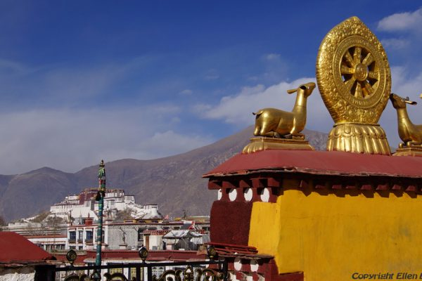 Lhasa: from the roof of the Jokhang Temple you can see the Potala Palace