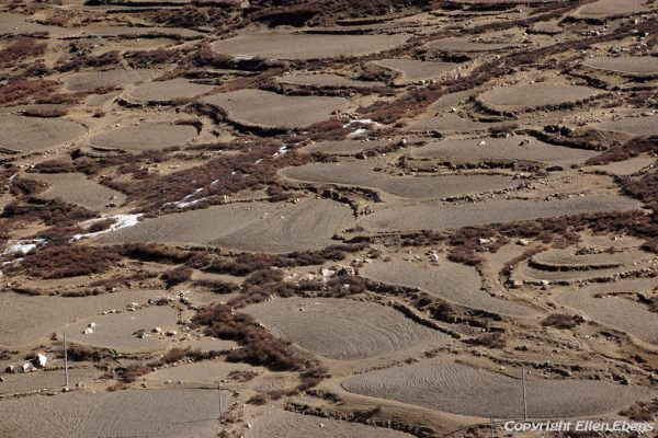 View from Yasang Monastery on the barren fields