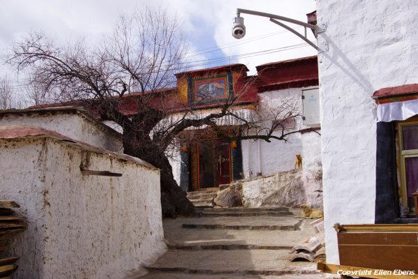 Lhasa: Chubzang Nunnery