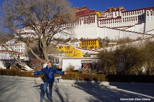 Me at the Potala Palace, January 2017