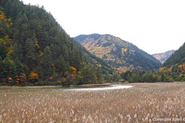 Jiuzhaigou National Park: Reed Lake