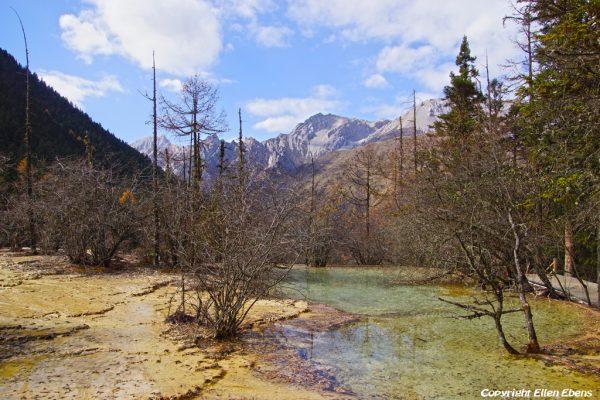 Huanglong National Park: Pond