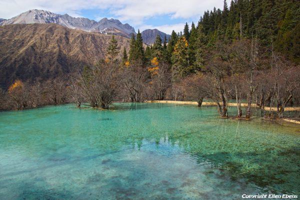 Huanglong National Park: Bonsai Pond
