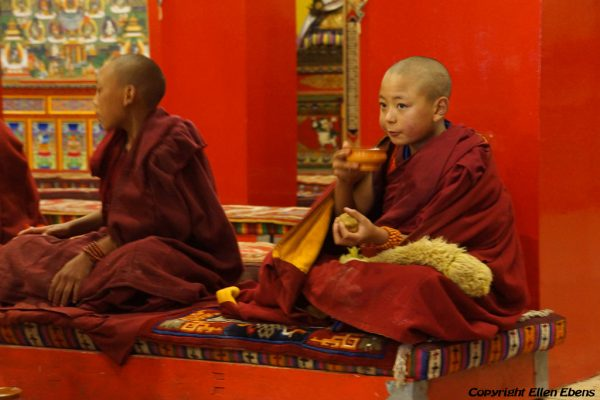 Boy monks at Dagzha Monastery at Zoige