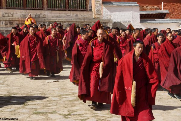 Labrang Monastery, Xiahe: monks running at the end of a prayer service at the court yard