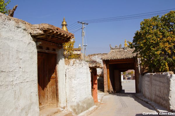 Little street with the houses of monks at Gomar monastery near Rebkong (Tongren)