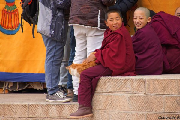 Young monks at Wutun Monastery, Rebkong (Tongren)