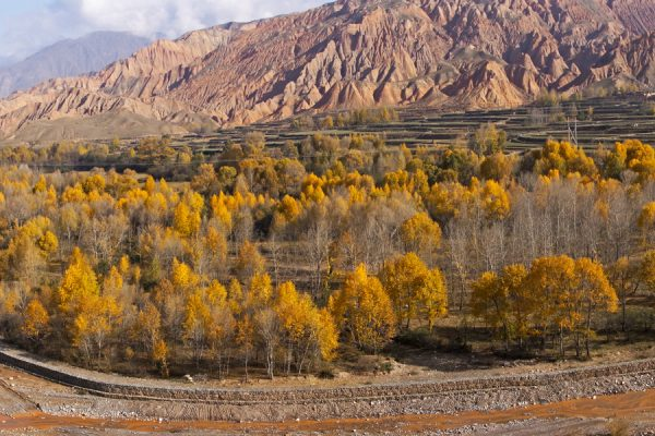 Landscape with autumn colours on the way from Xining to Xiahe