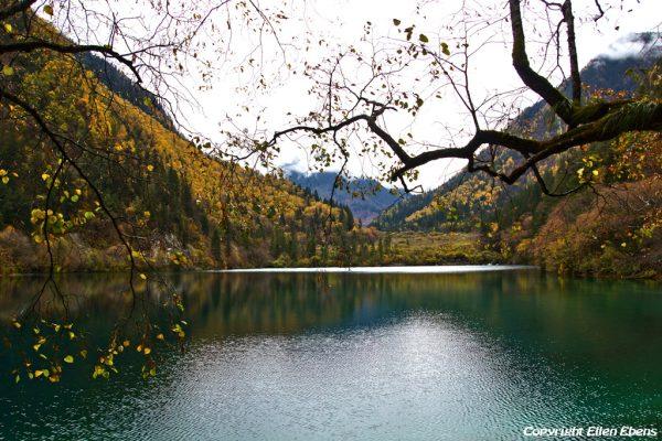 Jiuzhaigou National Park: Panda Lake