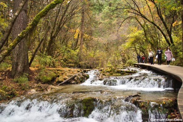 Jiuzhaigou National Park: walking from Panda Lake to Multi Coloured Lake