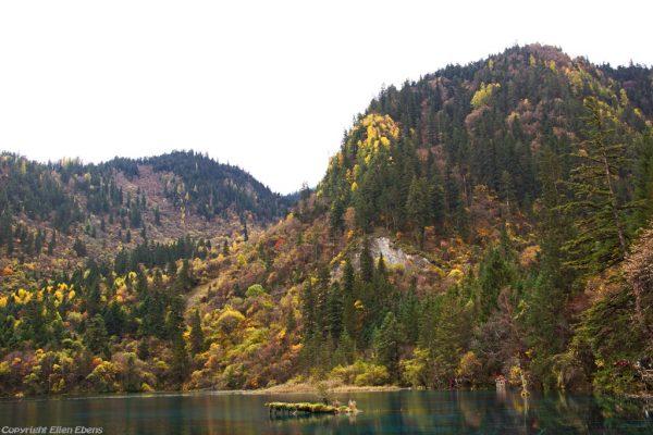 Jiuzhaigou National Park: Five Flower Lake