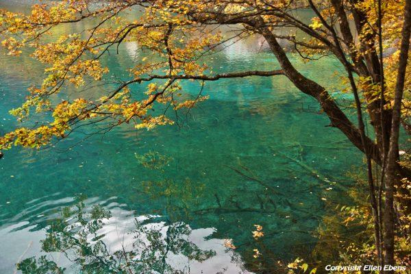 Jiuzhaigou National Park: Shuzheng Lakes