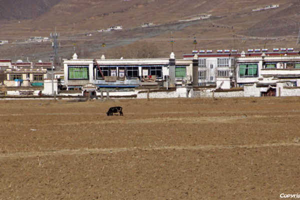 Village on the way from Lhasa to Drigung Til Monastery
