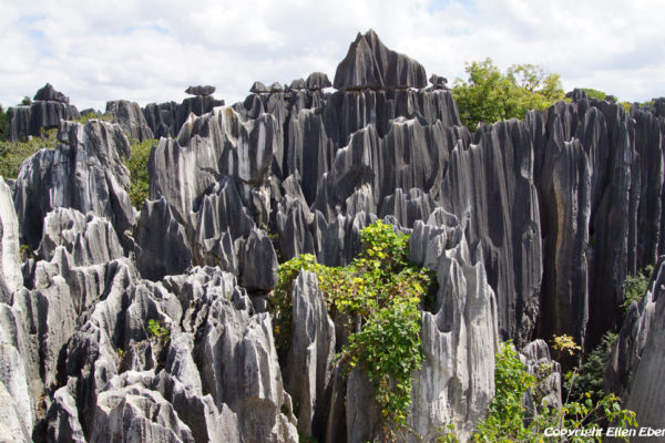 Stone Forest at Shilin