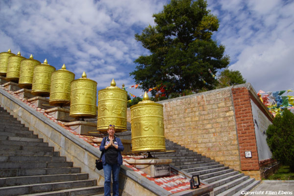 Me at the the park of the Golden Pagoda at Lijiang