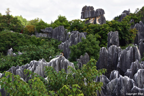 The Stone Forest at Shilin