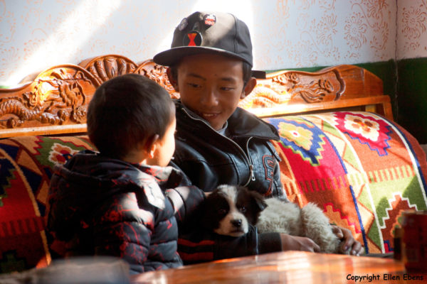 Two boys with a puppy in a small restaurant