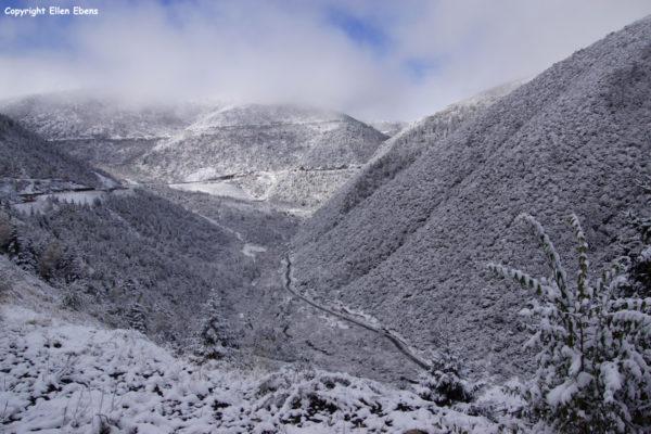 Winterlandscape after leaving Waze