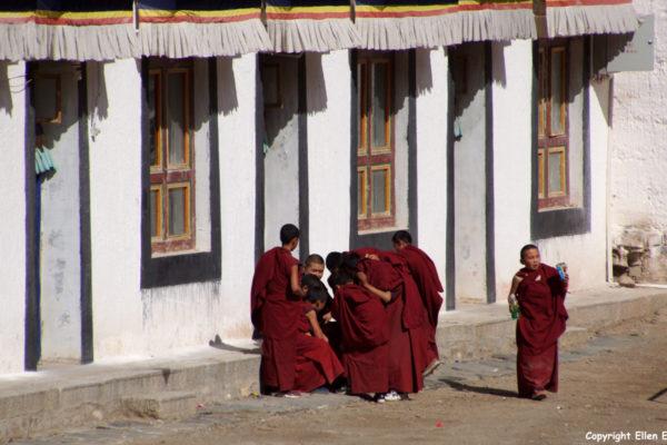 young monks Labrang Monastery at Xiahe